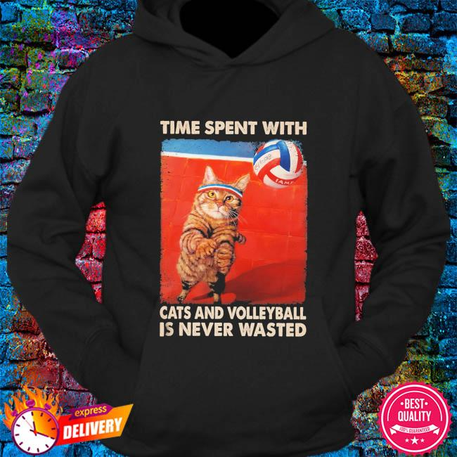 Time spent with Cats and Volleyball is never wasted s hoodie